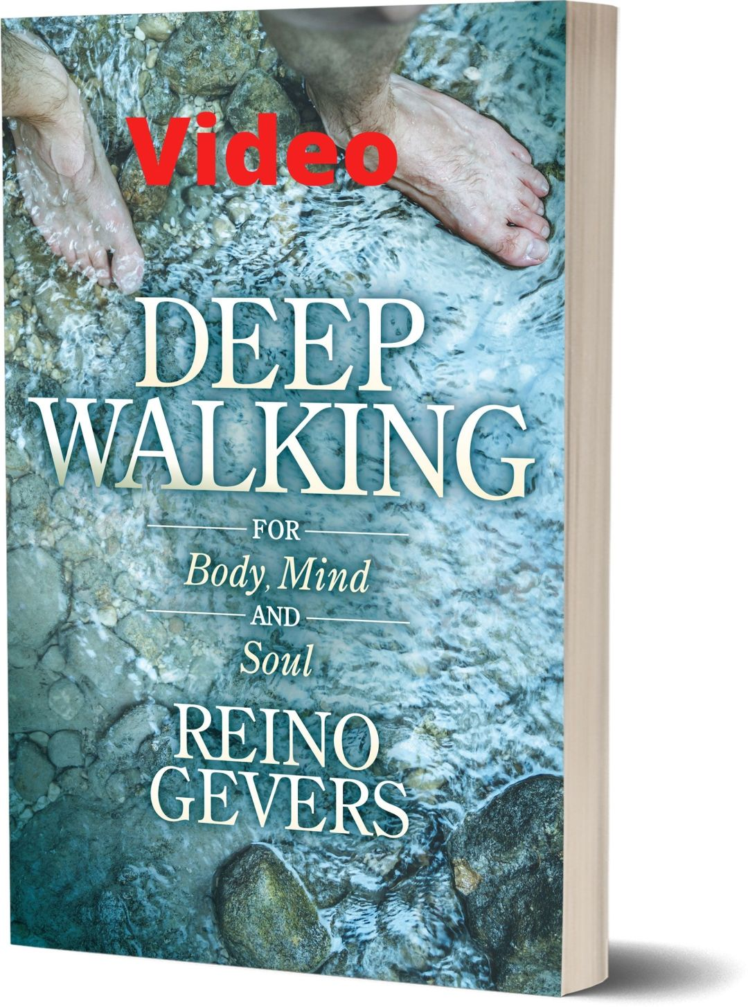 This image has an empty alt attribute; its file name is deepwalking_video_cover.jpg